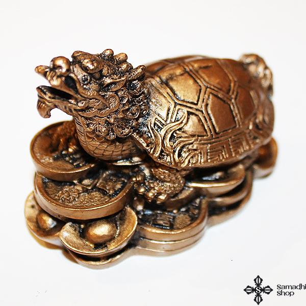 Sárkányfejű teknős